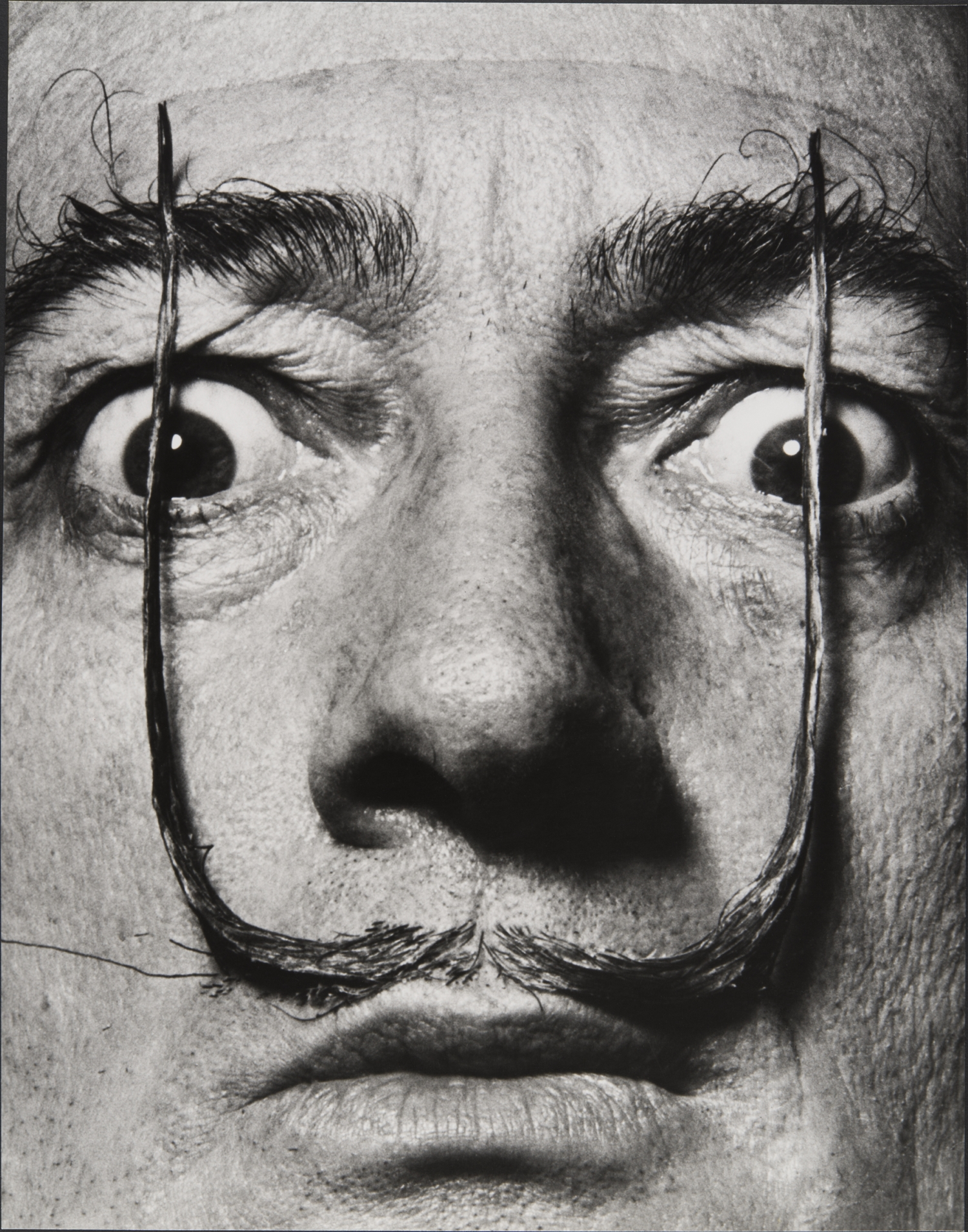 philippe-halsman-como-dos-centinelas-erguidos-mi-bigote-custodia-la-entrada-a-mi-verdadero-yo-dali-s-mustache-1954-ph